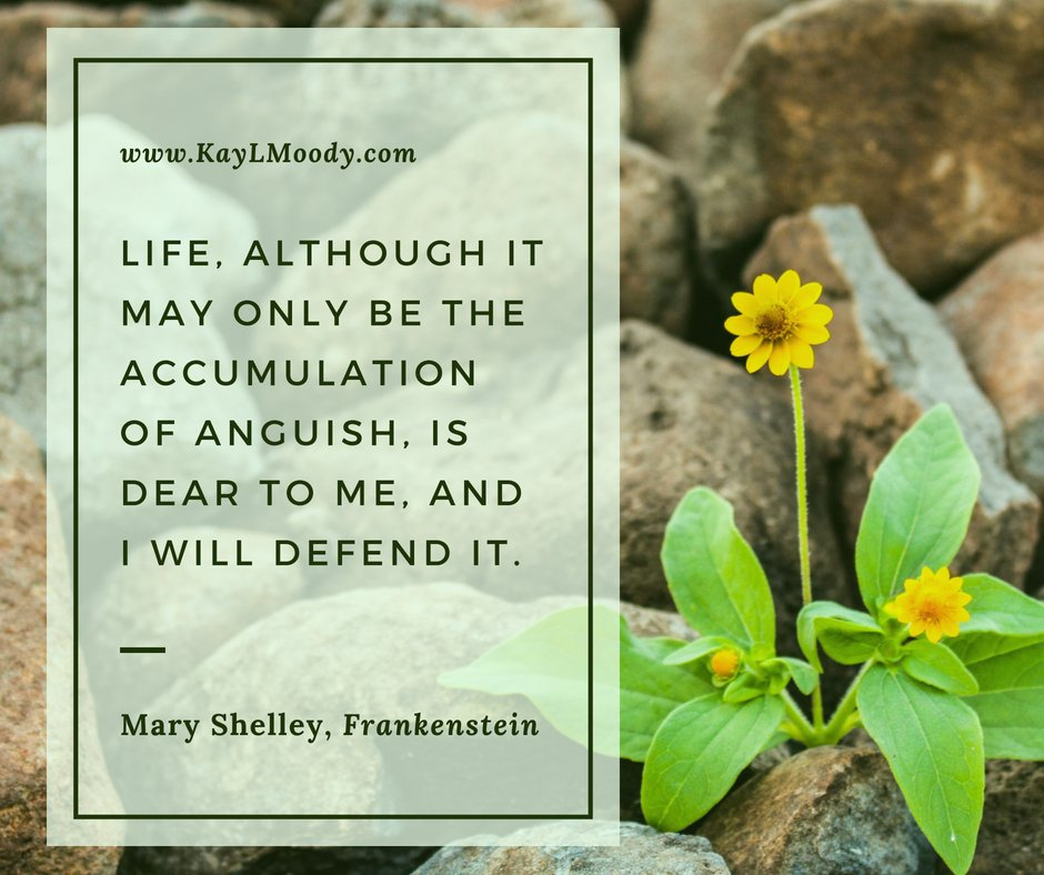 """Best book quotes, love quotes from books, sci fi book quotes, Harry Potter quotes, Dr. Seuss quotes and more from Kay L Moody! """"Life, although it may only be an accumulation of anguish, is dear to me, and I will defend it."""" (Mary Shelley, Frankenstein)"""
