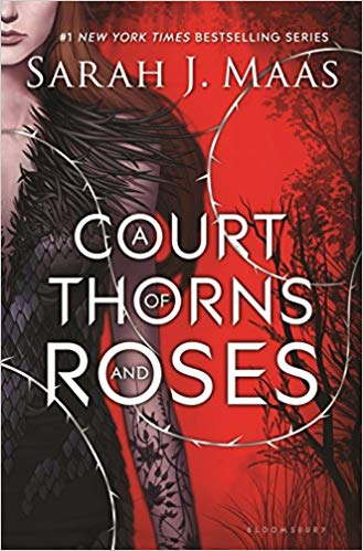 Our favorite YA fantasy reads with romantic storylines, including A Court of Thorns and Roses by Sarah J. Maas!