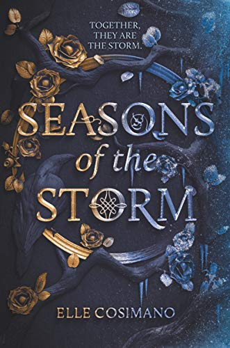 This is the only post you need for young adult fantasy books 2020. Includes Seasons of the Storm and more!